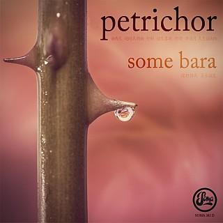 Petrichor Some Bara